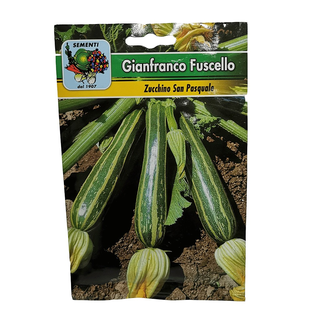 Semi da orto Zucchino san Pasquale 15gr